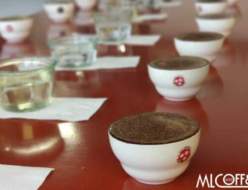 Was ist guter Kaffee?
